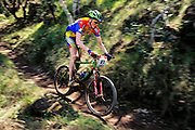 A racer in the World Cup mountain bike race at Skyline Park. Napa Valley, California. USA.