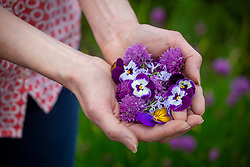 A handful of edible flowers