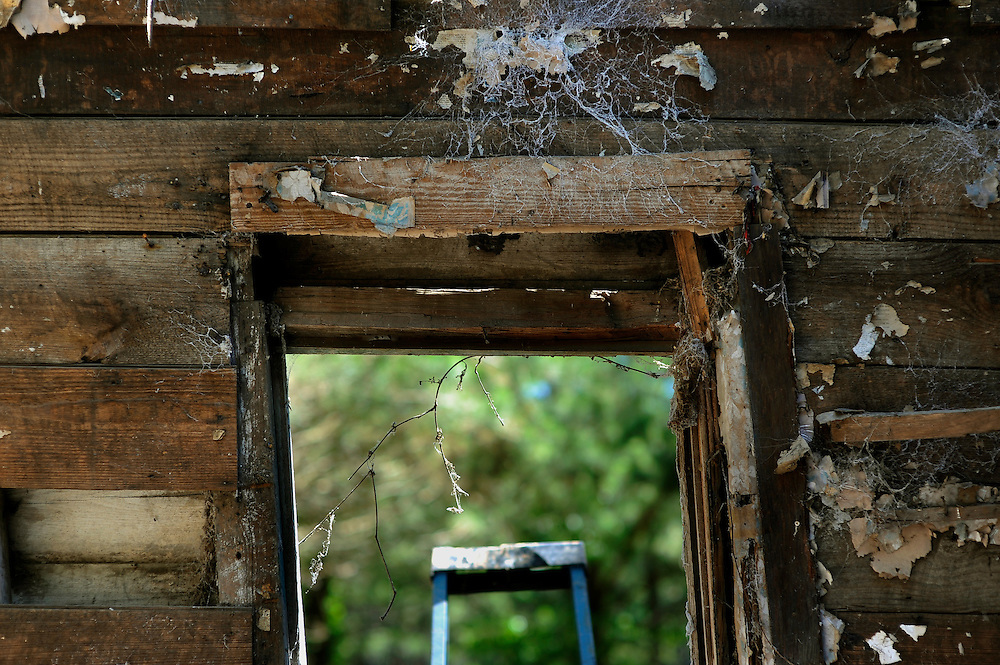 A workers ladder is framed by the only window in an 18th-century slave cabin in Edisto Island, South Carolina. The cabin dismantled and ship it to the Smithsonian's new National Museum of African American History and Culture in Washington, D.C. (Stephen Morton for The New York Times)