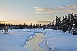 Winter Sunrise, Island Park, Idaho