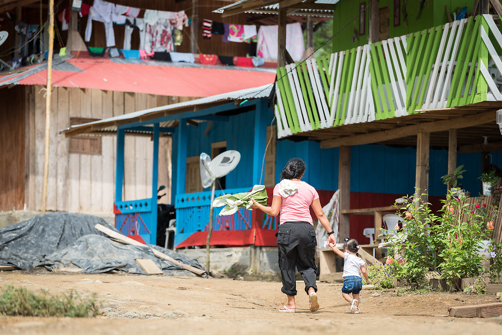 16 November 2018, San José de León, Mutatá, Antioquia, Colombia: 14-month-old girl Charli Stephany and her mother walk through the village in San José de León. Born in late October 2017, the girl is just over a year old and her mother went through pregnancy at a time when the plastic that today makes the foundation of fish farming tanks, served as roofs over community members' heads. Following the 2016 peace treaty between FARC and the Colombian government, a group of ex-combatant families have purchased and now cultivate 36 hectares of land in the territory of San José de León, municipality of Mutatá in Antioquia, Colombia. A group of 27 families first purchased the lot of land in San José de León, moving in from nearby Córdoba to settle alongside the 50-or-so families of farmers already living in the area. Today, 50 ex-combatant families live in the emerging community, which hosts a small restaurant, various committees for community organization and development, and which cultivates the land through agriculture, poultry and fish farming. Though the community has come a long way, many challenges remain on the way towards peace and reconciliation. The two-year-old community, which does not yet have a name of its own, is located in the territory of San José de León in Urabá, northwest Colombia, a strategically important corridor for trade into Central America, with resulting drug trafficking and arms trade still keeping armed groups active in the area. Many ex-combatants face trauma and insecurity, and a lack of fulfilment by the Colombian government in transition of land ownership to FARC members makes the situation delicate. Through the project De la Guerra a la Paz ('From War to Peace'), the Evangelical Lutheran Church of Colombia accompanies three communities in the Antioquia region, offering support both to ex-combatants and to the communities they now live alongside, as they reintegrate into society. Supporting a total of more than 300 famil