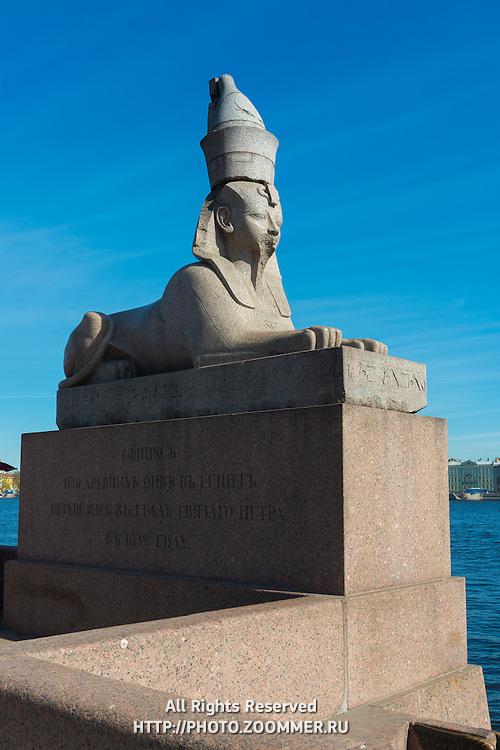 Egyptian Sphinx Statue On River Neva Embankment, Saint Petersburg
