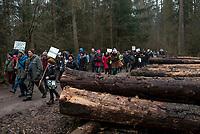 Postolowo, Puszcza Bialowieska, 30.12.2017. Zimowy Spacer Obywatelski w Puszczy . Akcja zostala zorganizowana po tym , jak Nadlesnictwo Hajnowka zamknelo dla turystow kolejne obszary lesne . Protestujacy uwazaja , ze przyczyni sie do zmniejszenia zainteresowania Puszcza turystow a tym samym po raz kolejny oslabi branze turystyczna w regionie Puszczy Bialowieskiej N/z uczestnicy marszu , sciete drewno przygotowane do wywozki fot Michal Kosc / AGENCJA WSCHOD