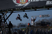 MX2 action
