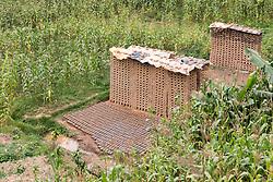 Brick Drying On Hillside