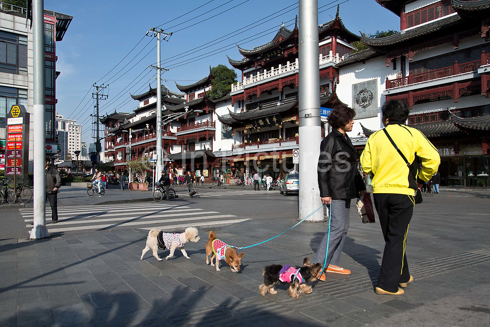 Old Town ShanghaiTwo ladies walk their poodles near Chenghuangmiao (City God) Temple on the old streets in Shanghai, China on 13 October 2013. Yuyuan and the surrounding Chenghuangmiao area represent the oldest vestige of Shanghai, having existed long before the British made Shanghai a treaty port and the most important economic hub in China.