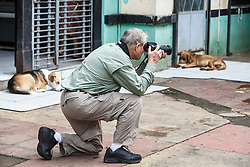 Photographer in market, with sleeping dogs, San Ramon, Alajuela, Costa Rica, Costa Rica.Costa Rica.