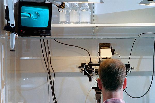 Nederland, Nijmegen, 14-11-2007Beeld op monitor van microscoop waar een eicel gefixeerd wordt om daarna kunstmatig bevrucht te worden.Foto: Flip Franssen