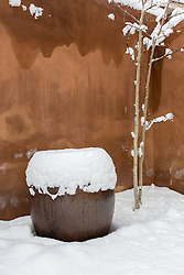 snow covered tree and pot against an adobe wall in Santa Fe, NM