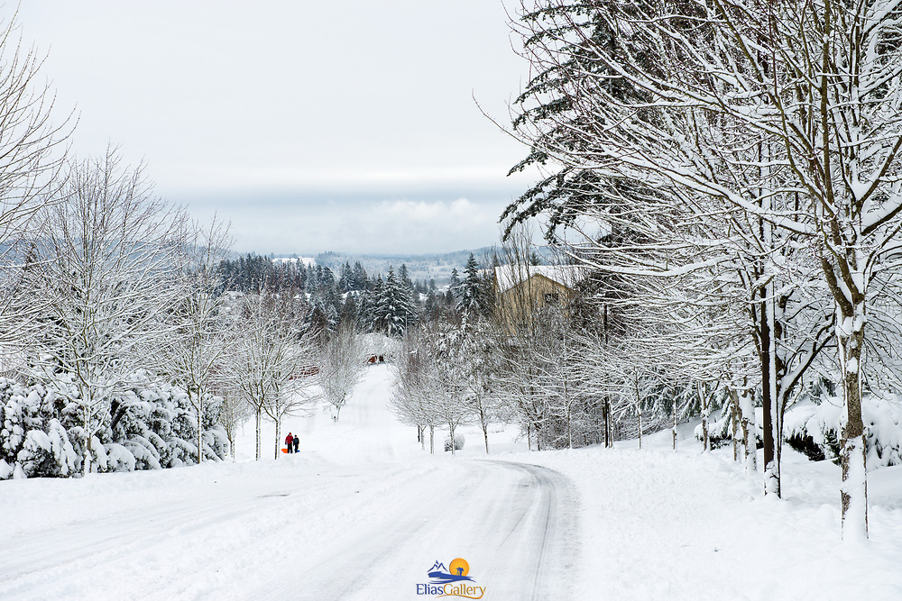 Kids playing in the snow. Happy Valley, OR.
