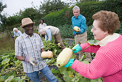 Group of older people working at the Allotment 'Green Gym',