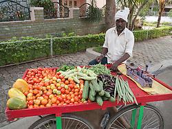 Street vendor of vegetables, Mysore.