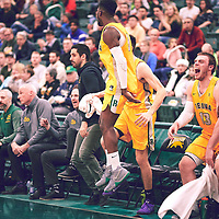 The bench celebrates during the Men's Basketball Home Game on Fri Feb 01 at Centre for Kinesiology,Health and Sport. Credit: Arthur Ward/Arthur Images