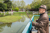 """Shanghai, China - April 7, 2013: old man playing """"er wu"""" traditional music instrument in fuxing park at the city of Shanghai in China on april 7th, 2013"""