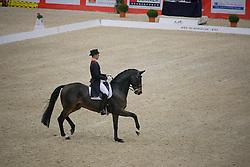 Minderhoud Hans Peter (NED) - Exquis Escapado<br /> CDI-W Lyon 2009<br /> © Dirk Caremans
