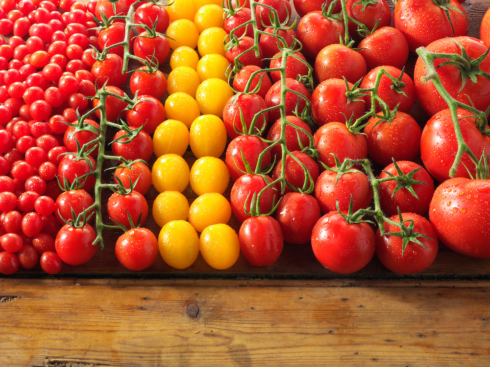 mixed yellow & red vine tomatoes