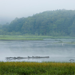 A foggy day on the Salmon River in East Haddam, Connecticut.  Fog.  Near confluence with the Connecticut River.