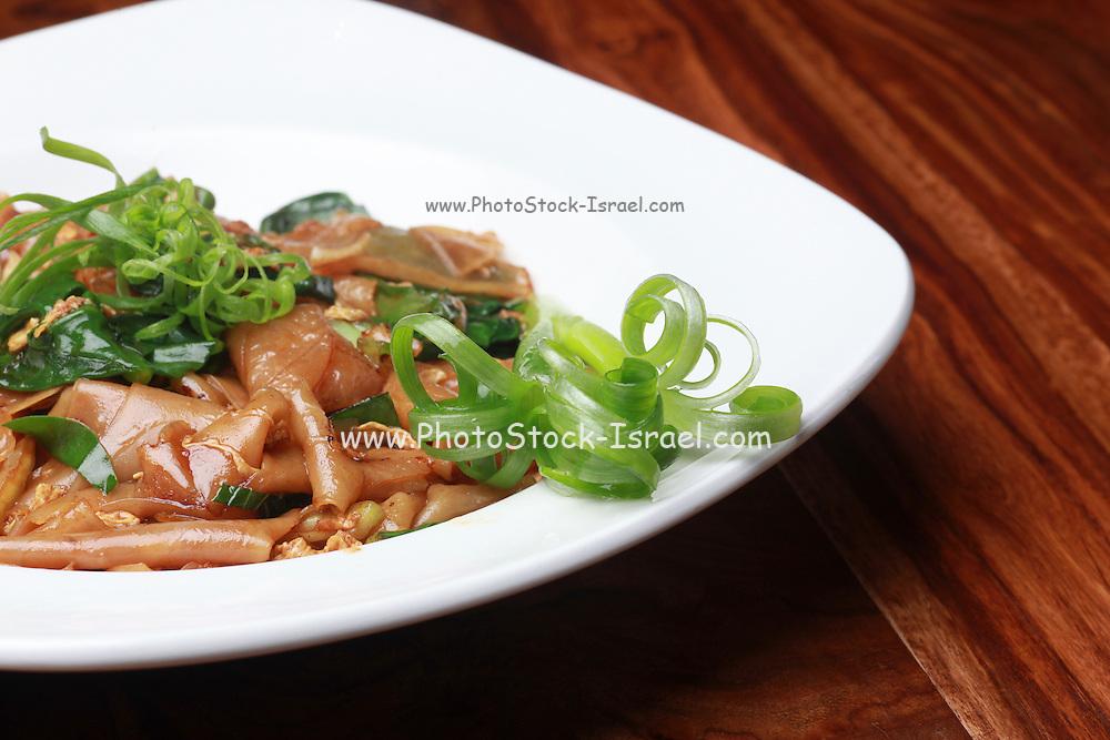 Vegetarian Stir fried noodles garnished with greens