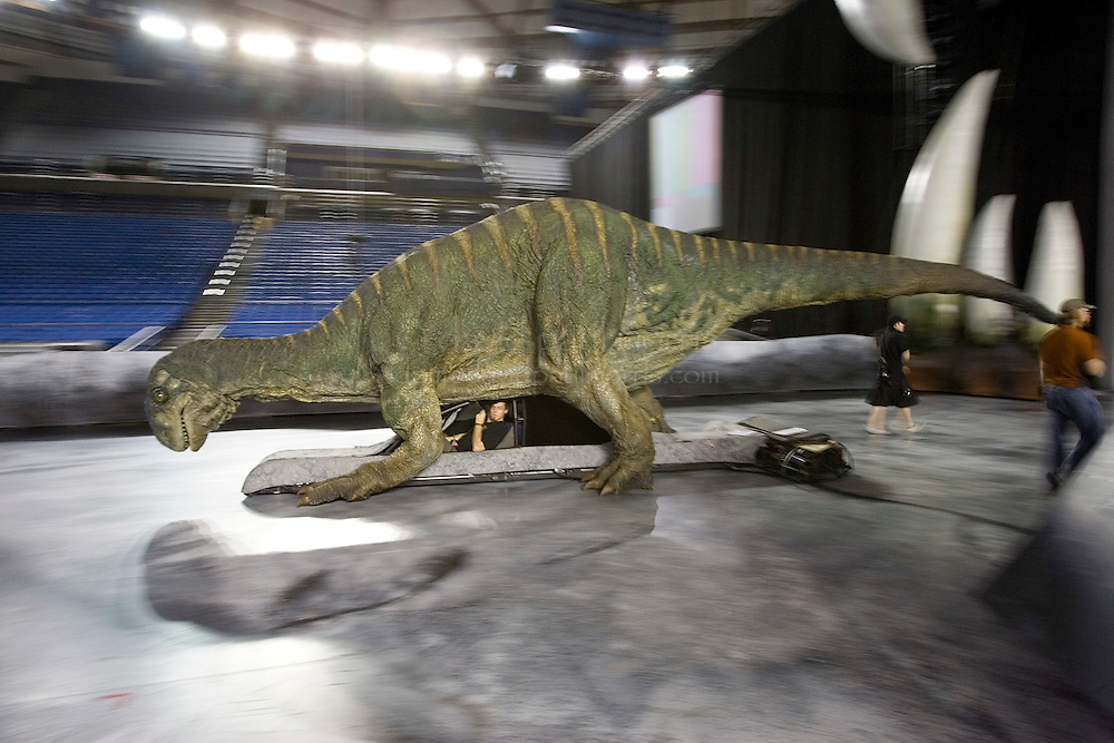 """TACOMA, WA - JULY 13:  A driver steers a Plateosaurus during a rehearsal check for """"Walking With Dinosaurs"""" on July 13, 2007 at the Tacoma Dome in Tacoma, Washington.  (Photo by David Paul Morris)"""