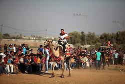 September 16, 2016 - Dair Al Balah, Gaza Strip, Palestinian Territory - A Palestinian man rides a camel during a Bedouin festival in Dair Al Balah in the central Gaza Strip September 16, 2016  (Credit Image: © Ashraf Amra/APA Images via ZUMA Wire)