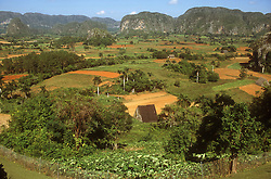 Picturesque landscape of the Vinales valley; Cuba; with Mogotes  limestone outcrops  in the background and tobacco drying hut in the foreground,