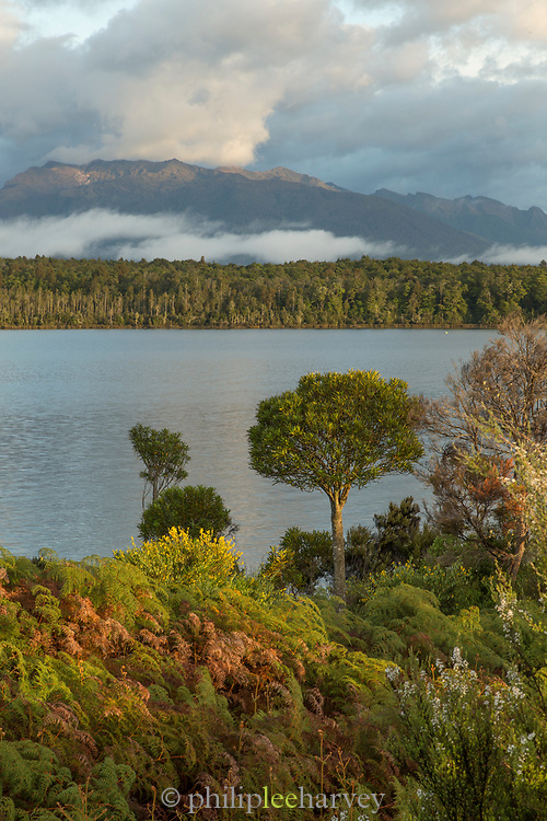 Landscape with view of mountains and forest on shore of Lake Wakatipu, near Queenstown, South Island, New Zealand