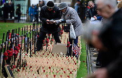 © Licensed to London News Pictures. 09/11/2016. London, UK. An elderly man and woman place crosses in the field of remembrance at Westminster Abbey in London, ahead of it opening officially tomorrow (Thurs). The Field of Remembrance pays tribute to all  Service men and women who have served in our Armed Forces since World War I. Photo credit: Ben Cawthra/LNP