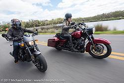 """Custom bike builder Jesse Rooke riding a new 2017 Harley-Davidson 750 Street Rod alongside Iron Lilly Leticia Cline (R) on the all new 2017 Harley-Davidson Road King Special with its 107"""" Milwaukee-Eight engine in Tomoka State Park during Daytona Beach Bike Week. FL. USA. Tuesday, March 14, 2017. Photography ©2017 Michael Lichter."""