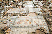 Israel, Lower Galilee, Zippori National Park The city of Zippori (Sepphoris) A Roman Byzantine period city with an abundance of mosaics The Nile House Beyond the Nile (detail)