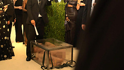 May 3, 2017 - Russia - Russian artist Fyodor Pavlov-Andreevich, 41, was arrested at Metropolitan Museum of Art during Met Gala 2017 for appearing nude inside of a clear fiberglass box. The box, originally covered by a white sheet, was dropped off by a group of anonymous handlers in a restricted area near the museum. Members of the NYPD quickly apprehended Pavlov-Andreevich. The artist refused to leave the box, so firefighters were forced to cut it open. In picture: artist Fyodor Pavlov-Andreevich during a performance. Photo from Lavoisier Clemente video. (Credit Image: © Russian Look via ZUMA Wire)