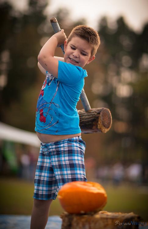 David Dockery, 5, of Greensboro.<br /> <br /> Quaker Lake Camp's 2017 Pumpkin Festival.<br /> <br /> Photographed, Saturday, October 21, 2017, in Greensboro, N.C. JERRY WOLFORD  / Perfecta Visuals