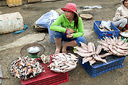 Vietnamese woman selling fish at the local fish market in the coastal fishing village of Ninh Hai, Ninh Thuan province, Central Vietnam. A large variety of exotic fish are available for sale in fresh Vietnamese markets such as this, all being sold on small individual stalls.
