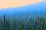 40 Mile Flats on the Stewart Cassiar Highway<br /> near Iskut<br /> British Columbia<br /> Canada