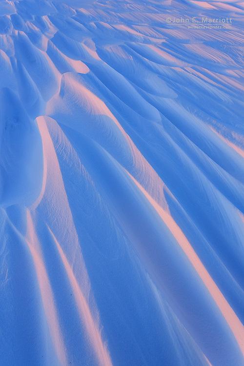 Windswept tundra in Nunavut