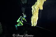 diver and stalactite in The Carwash cenote, Akumal, Yucatan Peninsula, Mexico,   MR 117