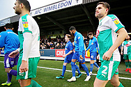 Mascot walking out with players before the EFL Sky Bet League 1 match between AFC Wimbledon and Plymouth Argyle at the Cherry Red Records Stadium, Kingston, England on 26 December 2018.