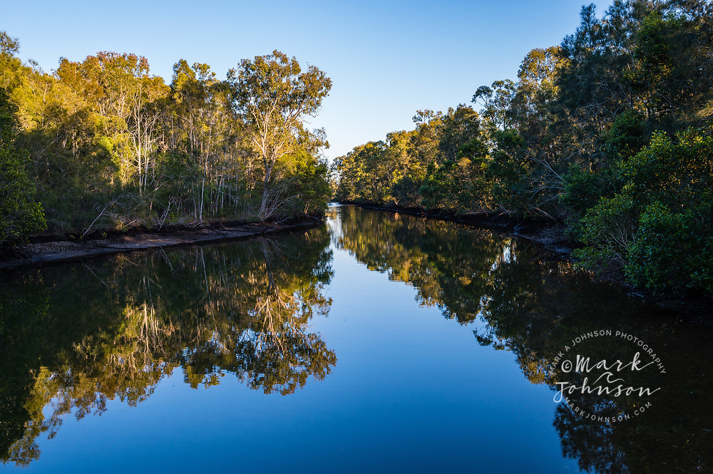 Forest reflected in the tranquil early morning stillness at Coombabah Lakes Conservation Area, Runaway Bay, Gold Coast, Queensland, Australia