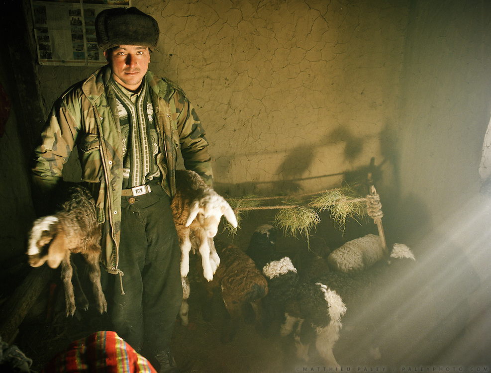 Hired Wakhi shepherd..Lambs are kept inside house because of the bitter cold. Evening and morning they are brought outside to their mum for milk. House of Abdul Rashid Khan,.Winter expedition through the Wakhan Corridor and into the Afghan Pamir mountains, to document the life of the Afghan Kyrgyz tribe. January/February 2008. Afghanistan