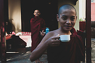 Mandalay, Myanmar - November 9, 2011: Two young Buddhist monks or novices, one drinking tea, at a monastery in Mandalay.