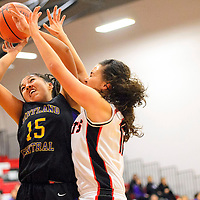 010314  Adron Gardner/Independent<br /> <br /> Kirtland Central Bronco Megan Silversmith (15) shoots through the arms of Grants Pirate Brianna Fank (12) in Grants Friday.