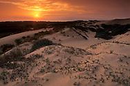 Sunset at the Guadalupe - Nipomo Dunes San Luis Obispo County, CALIFORNIA
