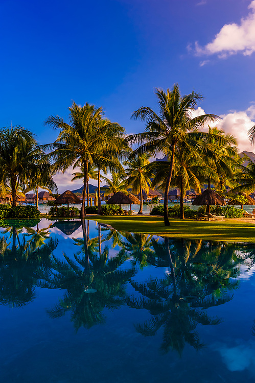 Reflections of palm trees in the swimming pool, Four Seasons Resort Bora Bora, Motu Tehotu, Bora Bora, French Polynesia.