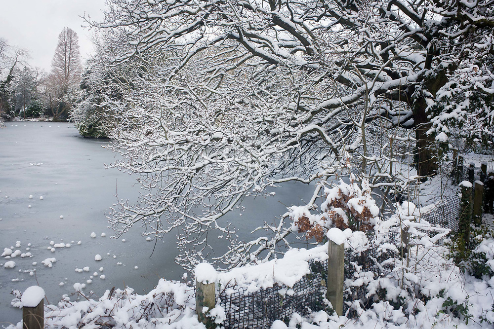 A frozen pond and tree landscape in Dulwich Park, south London during mid-winter snow. During a prolonged cold spell of bad weather, snow fell continuously on the capital, rendering this natural place into a Narnia-like scene. Dulwich Park is a 29 hectare (72 acre) park in Dulwich in the London Borough of Southwark, south London, England. The initial design was by Charles Barry (junior), later refined by Lt Col J J Sexby (who also designed Battersea and parts of Southwark Parks). It was opened in 1890 by Lord Rosebery. In 2004–6, the park was restored to its original Victorian layout, following a grant from the Heritage Lottery Fund.