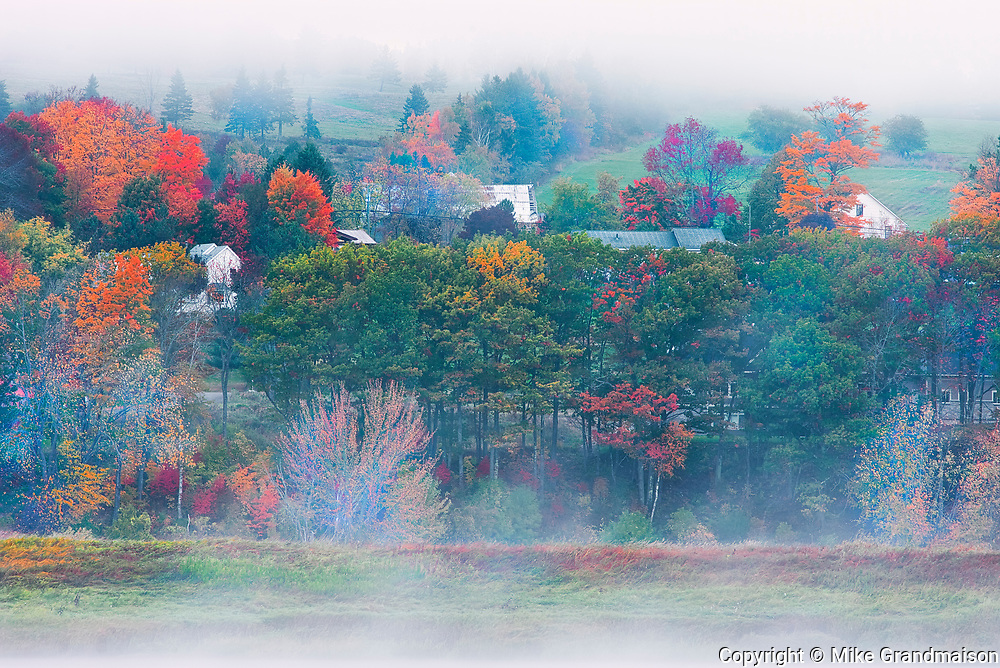 Houses along the St. John River in fog during autumn<br />Near Fredericton<br />New Brunswick<br />Canada