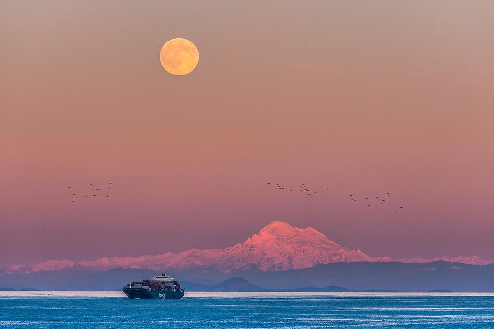 Hapag-Lloyd Cargo Ship, evening light, Salish Sea, full moon over Mount Baker, Washington, USA
