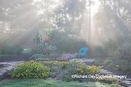 63821-23713 Sun rays in fog in flower garden, Marion Co., IL