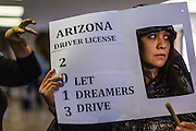31 OCTOBER 2013 - PHOENIX, AZ:  An immigration activist pickets the offices of Arizona Governor Jan Brewer in the foyer to her office Thursday. About 20 supporters of the DREAM Act and the deferred action program of President Barack Obama visited the office of Arizona Governor Jan Brewer to protest her decision to deny drivers licenses to Arizona DREAMERS and immigrants granted deferred action status by immigration authorities. The protest was a part of ongoing series of actions by immigration rights activists in Arizona to protest against anti-immigrant actions taken by Arizona political leaders.   PHOTO BY JACK KURTZ