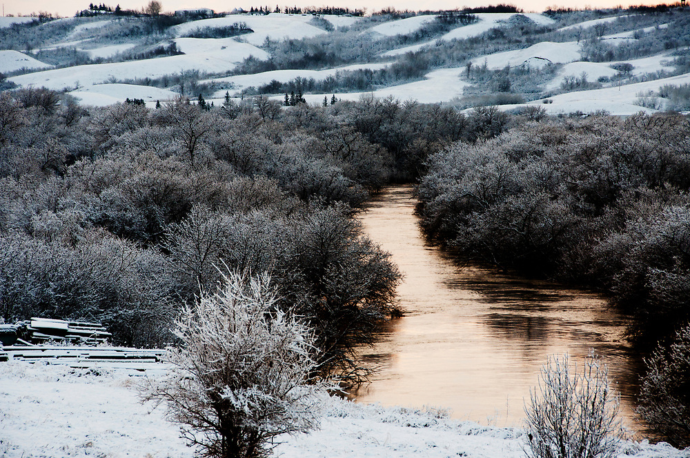 Early winter morning light turns a stream gold in southern Saskatchewan.