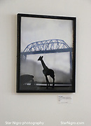 Giraffe and Bridge Kingston, NY by Star Nigro<br /> <br /> <br /> <br /> ©2021 All artwork is the property of STAR NIGRO.  Reproduction is strictly prohibited.