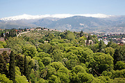 Snow capped Sierra Nevada mountains viewed from the Alhambra, Granada, Spain